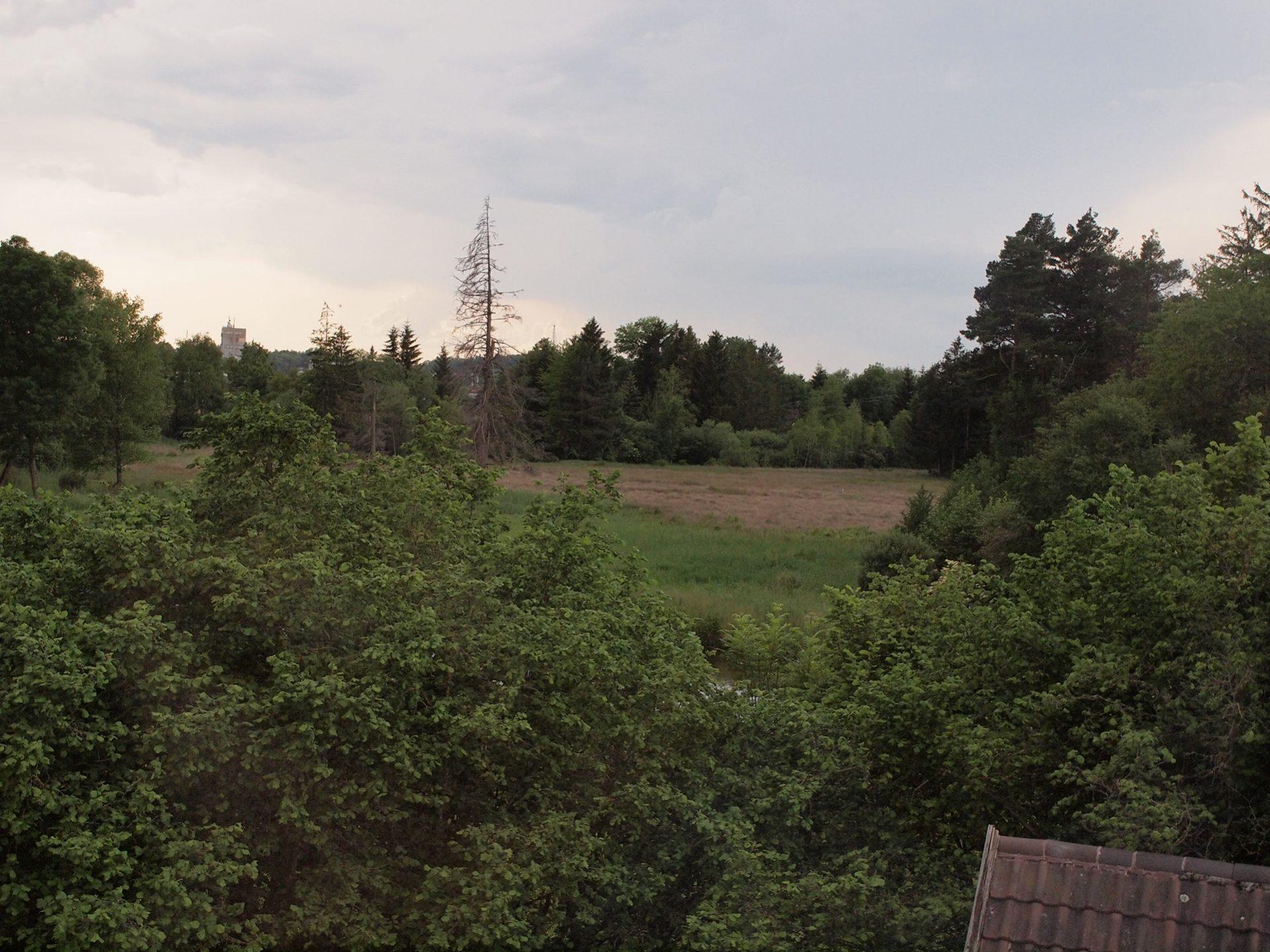 Blick von der Kappelle auf das Benninger Ried