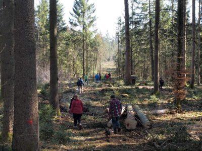 Vom Holzscheit zum Jägerschnitzel